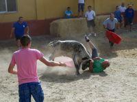 corrida2012-5.jpg