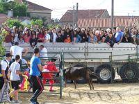 corrida2012-6.jpg