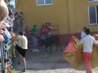 corrida2012-9.jpg